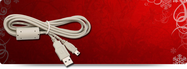 Can-West Ghana USB  A Male to A Male